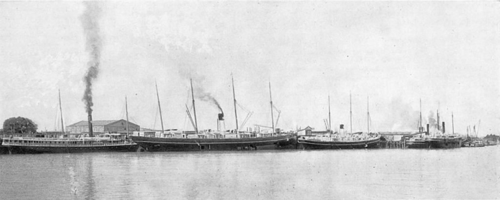 Morgan Line steamships at the Algiers landing prior to 1895.