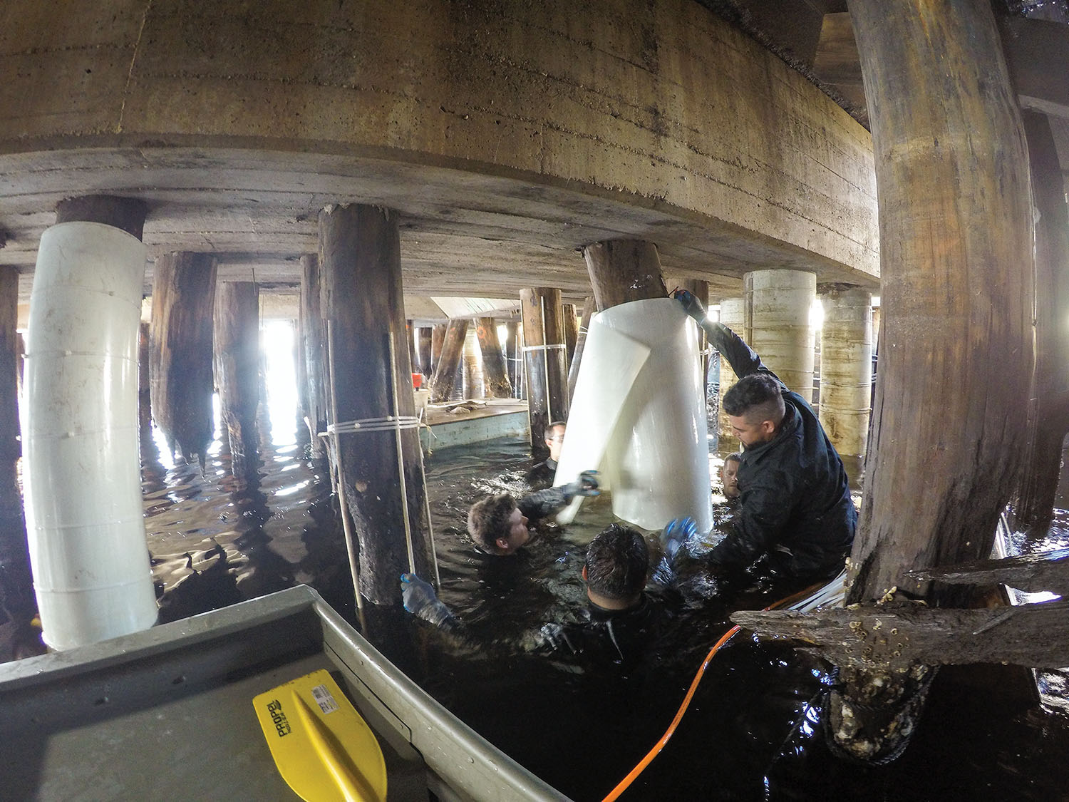 Under pier with crew from FRP Construction installing PileMedic by QuakeWrap to rapidly repair damaged timber piles at an industrial pier in Virginia. (Photo courtesy of FRP Construction/Pilemedic by QuakeWrap)