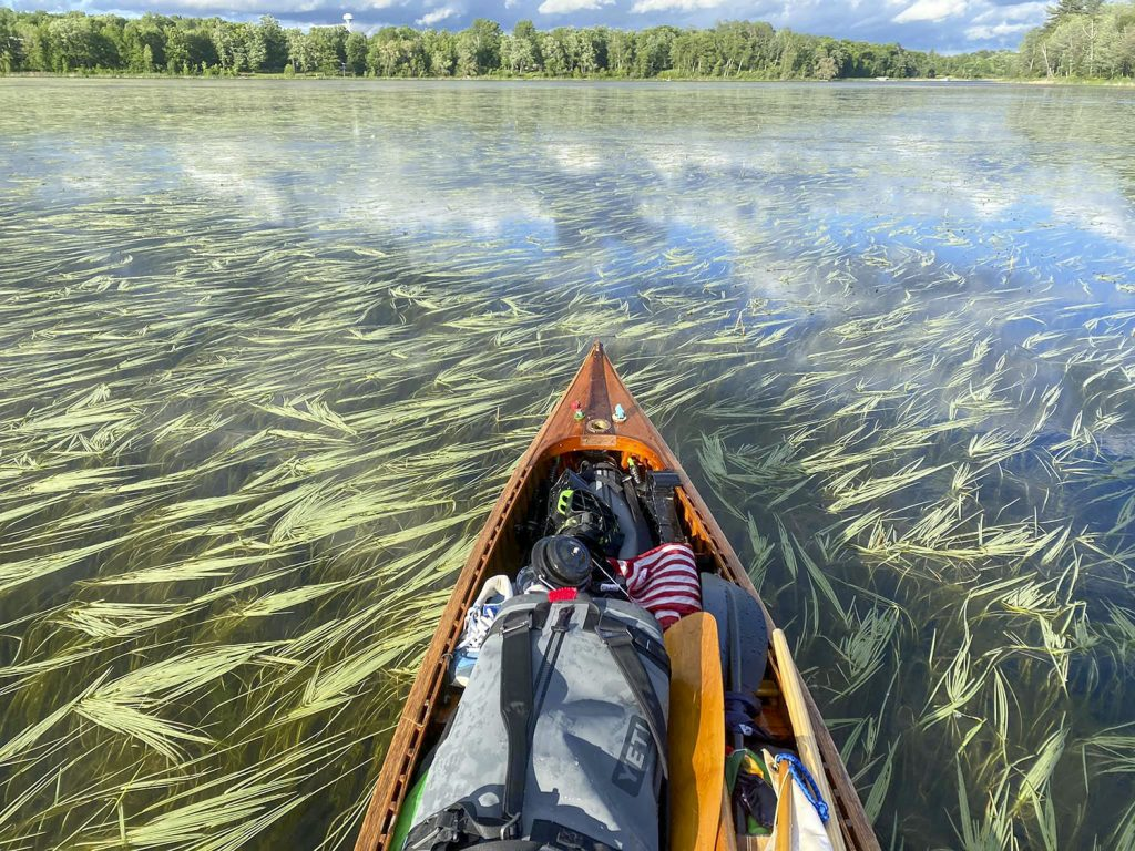 Paddling through the marsh-like waters of the Upper Mississippi River. (Photo courtesy of Joey Cargol)